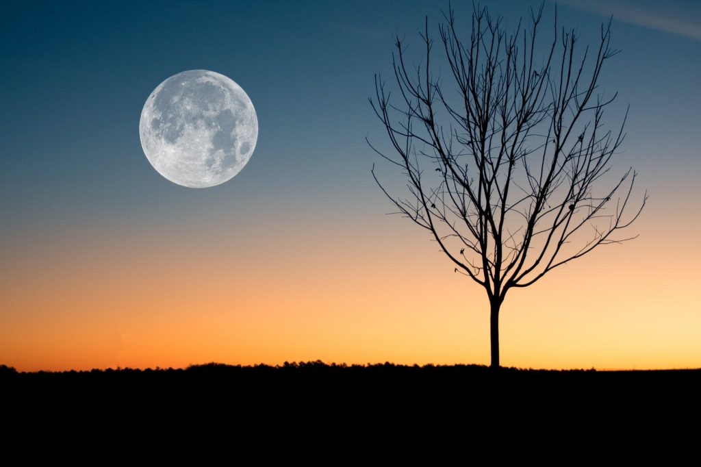 illustration of moon showing during sunset