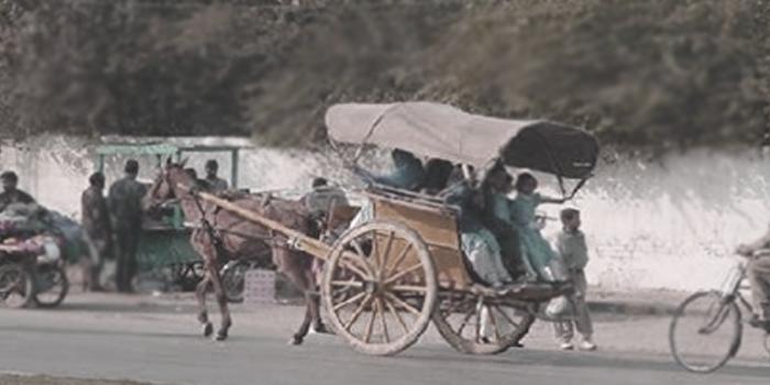 کیمبل پور سے اٹک تک- 6